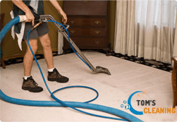 Carpet Cleaning from Tom